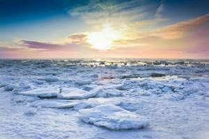 Tiefkühlgutversicherung